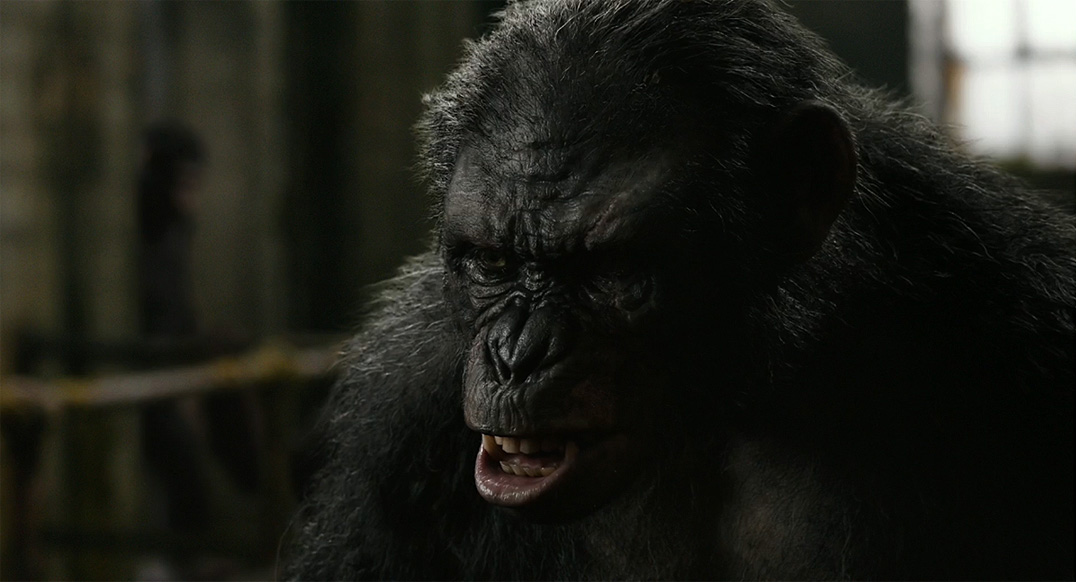 download dawn of the planet of the apes full movie in hindi