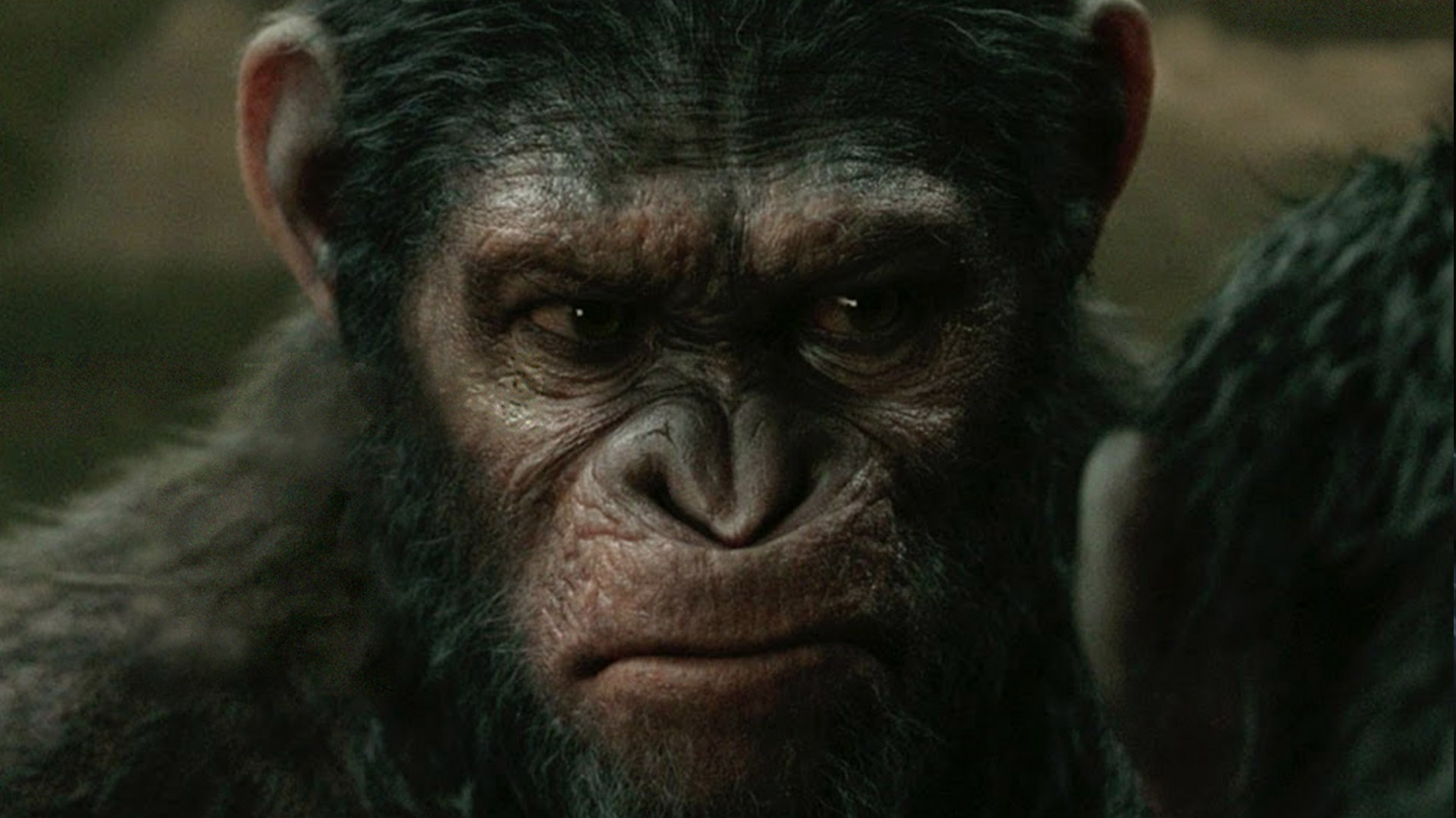 Senior Lighting Technical Director - Dawn of the Planet of the Apes