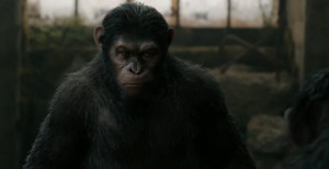 apes2_2